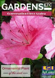 71 best ornamental plant of the week images on