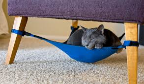 cat crib anywhere hammock minimalistic cat bed attaches to any