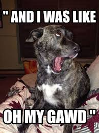 Omg Memes - funny dog memes i top 50 of all time i world wide interweb