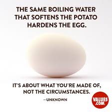 quotes about building a home the same boiling water that softens the potato hardens the egg