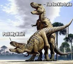 T Rex Arms Meme - t rex pull my hair humoar com