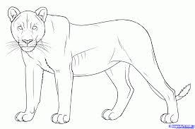 realistic lion coloring pages how to draw a realistic lion head