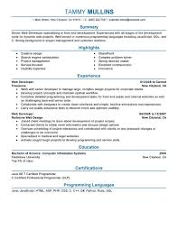 Entry Level Java Developer Resume Entry Level Web Developer Resume Examples Free Resume Example