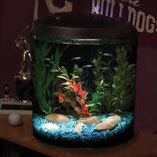 aquarium halloween hawkeye 3 5 gallon 180 view with led lighting and filter walmart com