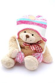 teddy clothes teddy in winter clothes stock photography image 8217012