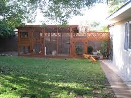 the chicken condo backyard chickens