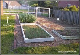 expanding my garden sanctuary gardener