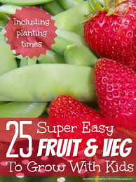 best 25 easy to grow vegetables ideas on pinterest growing