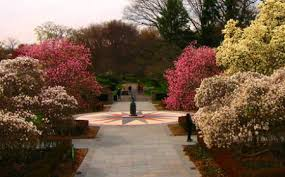 Prospect Park Botanical Garden S Day Gifts That The Most News Nyc