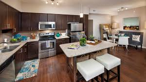apartments in st petersburg for rent cottonwood bayview