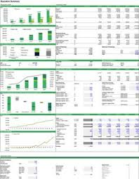 forecasting the cash flows of a forestry project executive summary