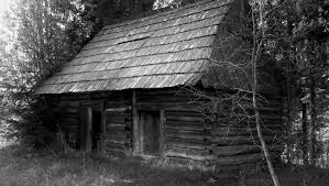 Shack Free Images Forest Black And White Wood House Building Barn