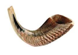 anointing horn ram s horn shofar xl 1150 holy land gifts