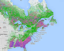 map canada east coast global forest data on canadian us forests
