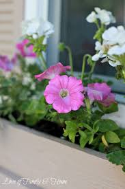 how to build a window flower box easy u0026 inexpensive diy window boxes love of family u0026 home