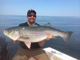 got stryper fishing charters on cape cod for all ages tuna and