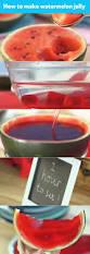 Best 25 Watermelon Jelly Ideas On Pinterest Melon Jelly Recipes