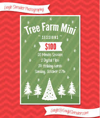 holiday tree farm mini sessions frederick family photography