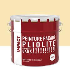 Pierre Allume Feu Leroy Merlin Peinture Façade Pliolite Impact Ton Pierre 10 L Leroy Merlin