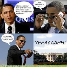 Csi Miami Memes - puns csi miami funny puns pun pictures cheezburger