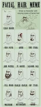 Facial Hair Meme - facial hair meme holthin by ho9 ve on deviantart
