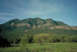 Arizona mountains images Sky islands the arizona experience landscapes people culture jpg