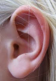 light headed and ears ringing why do i sometimes hear ringing in my ears especially when i drink