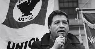 cesar chavez cesar chavez s son says leader would have backed clinton