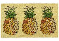 Pineapple Area Rug Picture 3 Of 46 Pineapple Area Rug Best Of Luxury