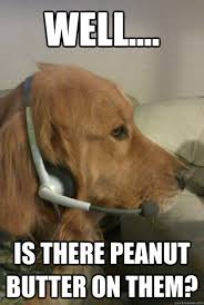Peanut Butter Meme - 22 dogs who are really excited to eat your peanut butter cuteness