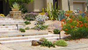 landscape design scottsdale phoenix design build envirogreen