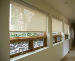 Decorative Roller Window Shades Motorized Roller Blinds Business For Curtains Decoration