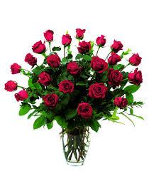 2 dozen roses san francisco floral flowers