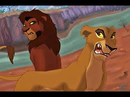 273 lion king images lion king