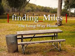 amazon com finding miles the long way home darrin luginski