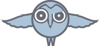 The Barn Owl Carol Stream Barn Owl Giftsbarn Owl Gifts