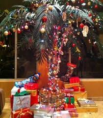 palm tree christmas tree lights palm trees christmas lights and warm breezes outdoor adventures