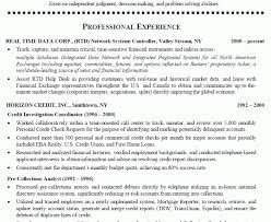 Sample Resumes For Customer Service by Inspiring Sample Resumes For Customer Service Representative