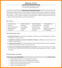Resume Skills And Abilities Examples by It Resume Skills Free Resume Example And Writing Download