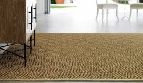 Natural Fiber Area Rugs by Natural Fiber Area Rugs Rugs Ideas