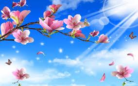 hd flowers butterflies nature twigs butterfly gallery wallpaper