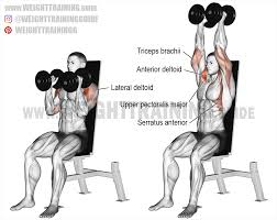 seated neutral grip dumbbell overhead press instructions and video