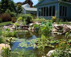 how to make a low maintenance backyard pond in cranford nj images