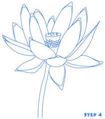 Simple Lotus Flower Drawing - 116 best lotus images on pinterest lotus flowers drawings and