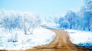 Way To Winter Winter Road Wallpaper 6991704