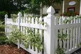 White Pvc Trellis 26 White Picket Fence Ideas And Designs