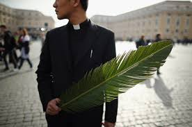 where to buy palms for palm sunday palm sunday 2016 pope francis vatican live blessings