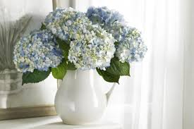 decor home accent with hydrangea arrangements and white vase for