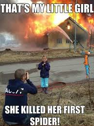 I Saw A Spider Meme - 60 best omg images on pinterest ha ha funny stuff and funny pics