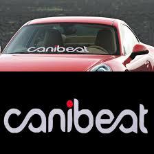 subaru windshield decal canibeat decals stickers ebay